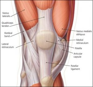 Patella location in knee