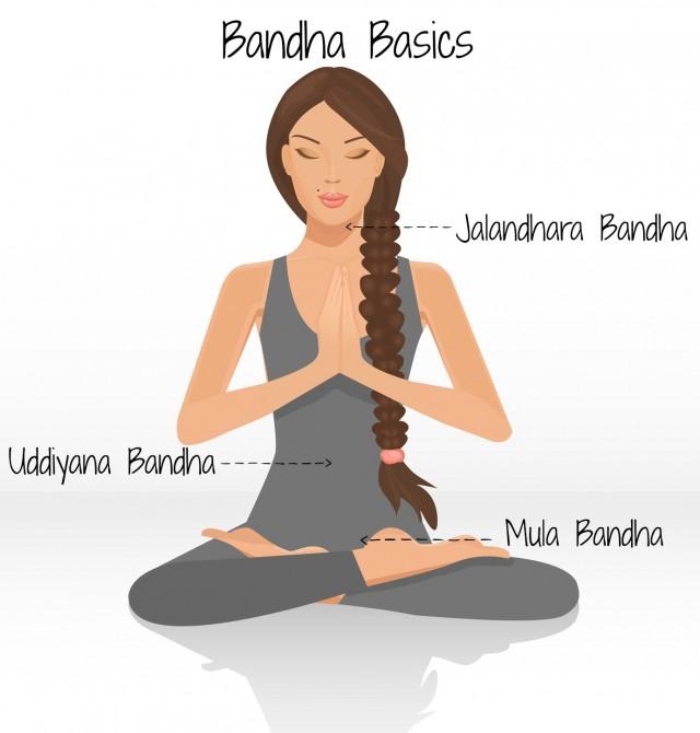 yoga bandha basics