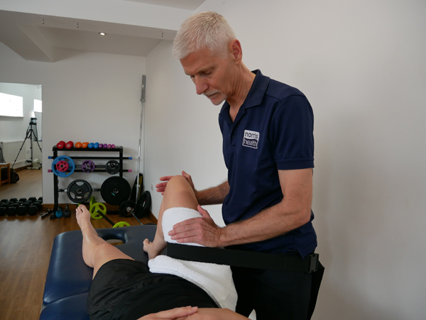 integrated manual therapy techniques